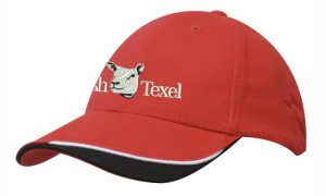 Irish Texel Baseball Cap –  Red